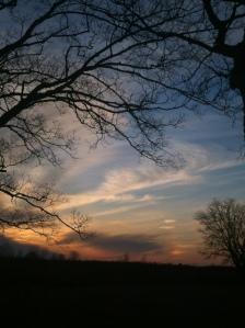 birds sunset zac chipmunk 072